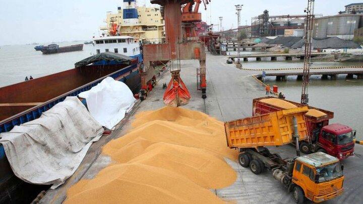 تامین بیش از سه میلیارد دلار برای واردات نهاده های دامی
