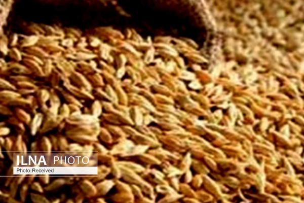 قیمت کنجاله سویا در بنادر ۲۷۰۰ تومان تعیین شد